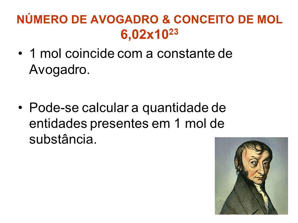 NÚMERO DE AVOGADRO & CONCEITO DE MOL 6,02x1023