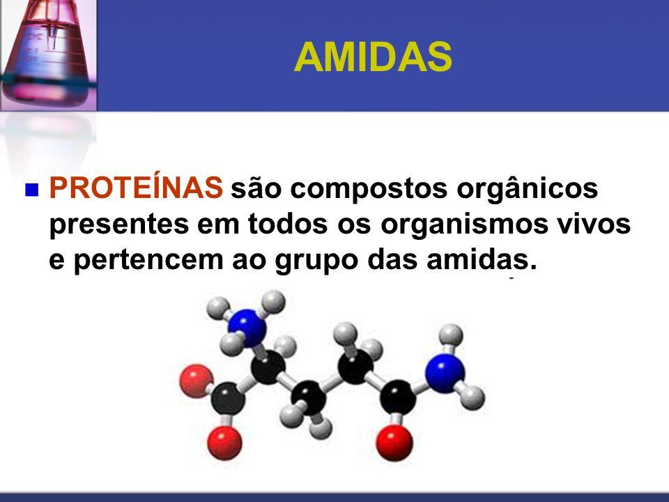 AMIDAS PROTEÍNAS são compostos orgânicos presentes em todos os organismos vivos e pertencem ao grupo das amidas.