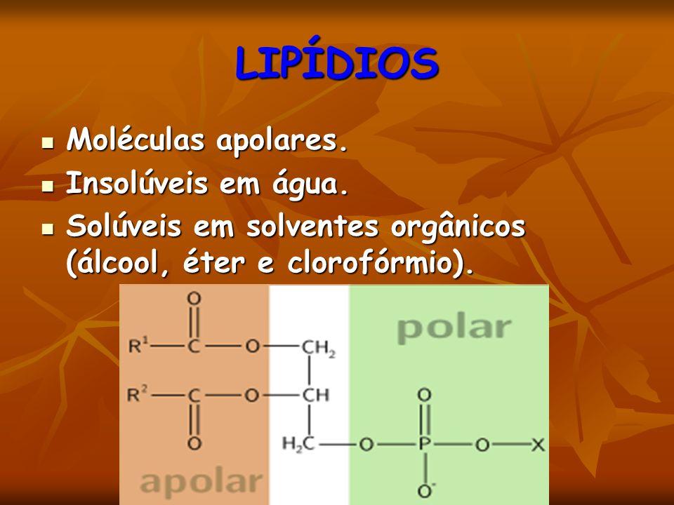 LIPÍDIOS Moléculas apolares. Insolúveis em água.