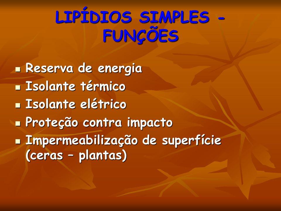 LIPÍDIOS SIMPLES - FUNÇÕES