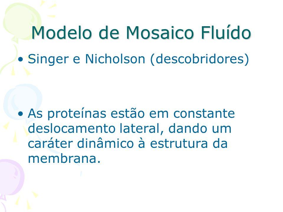 Modelo de Mosaico Fluído