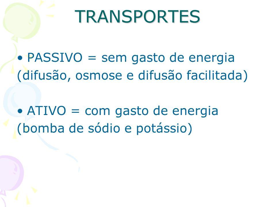 TRANSPORTES PASSIVO = sem gasto de energia