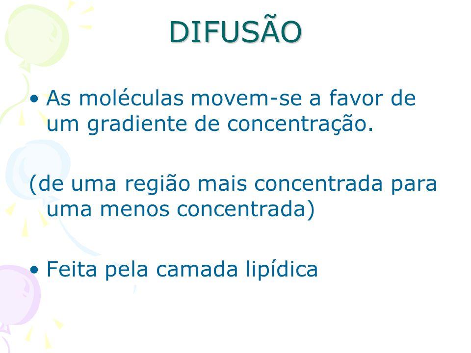 DIFUSÃO As moléculas movem-se a favor de um gradiente de concentração.