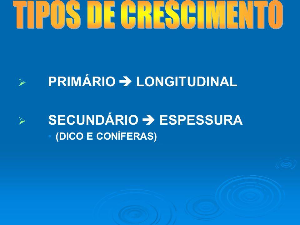 TIPOS DE CRESCIMENTO PRIMÁRIO  LONGITUDINAL SECUNDÁRIO  ESPESSURA