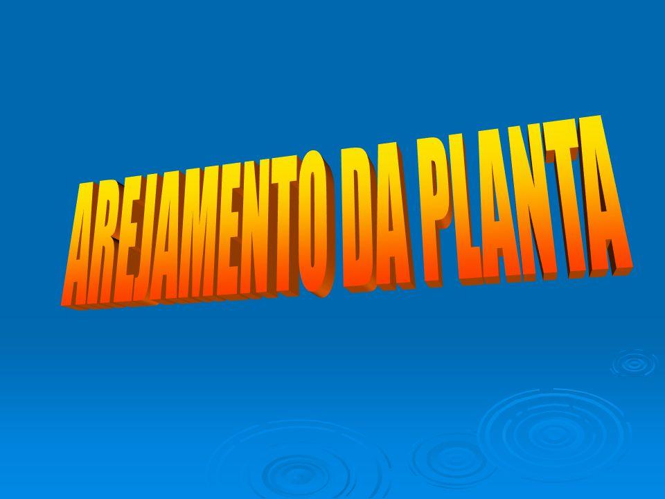 AREJAMENTO DA PLANTA
