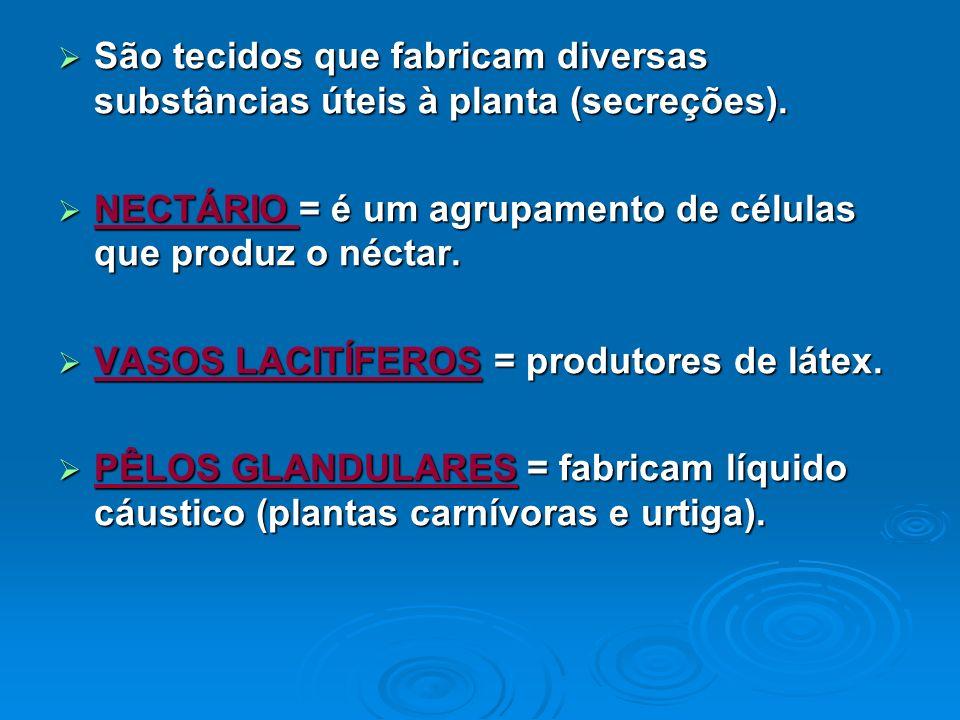 São tecidos que fabricam diversas substâncias úteis à planta (secreções).