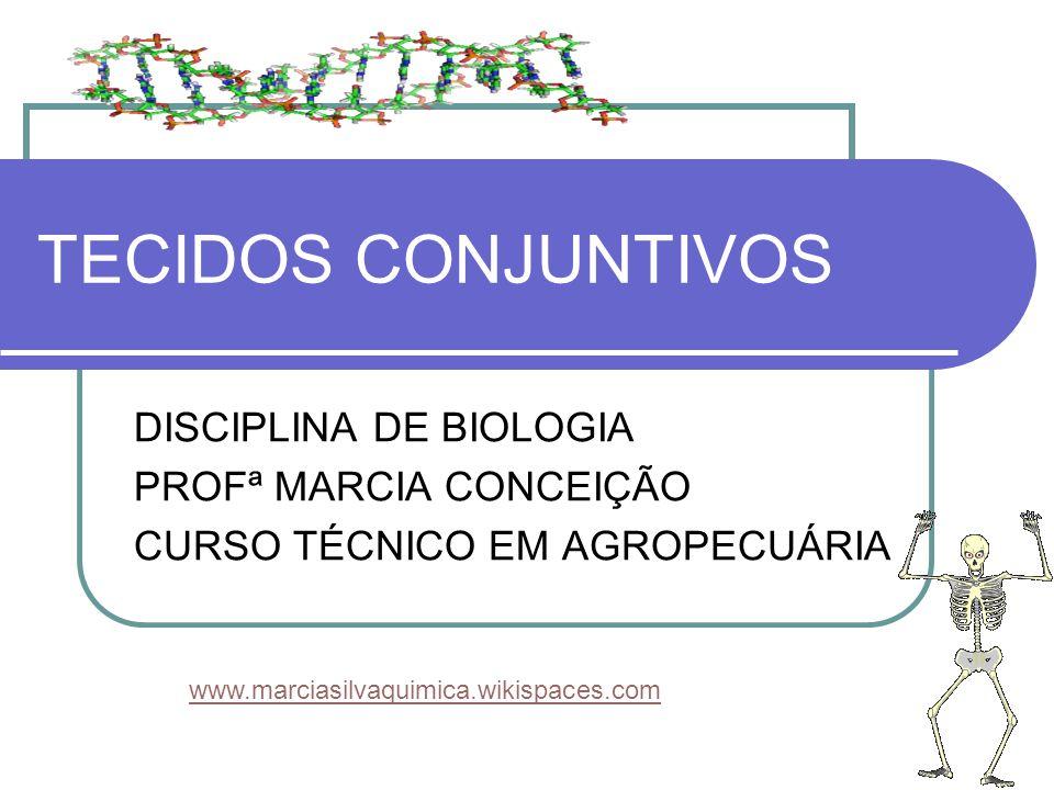 TECIDOS CONJUNTIVOS DISCIPLINA DE BIOLOGIA PROFª MARCIA CONCEIÇÃO