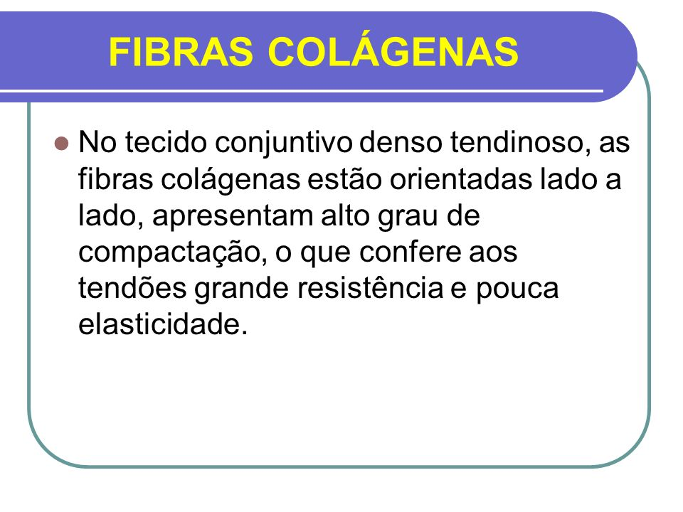 FIBRAS COLÁGENAS
