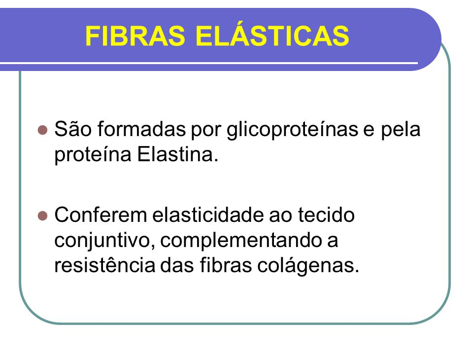 FIBRAS ELÁSTICASSão formadas por glicoproteínas e pela proteína Elastina.