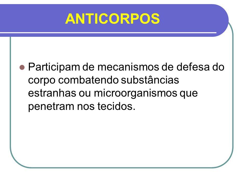 ANTICORPOS Participam de mecanismos de defesa do corpo combatendo substâncias estranhas ou microorganismos que penetram nos tecidos.