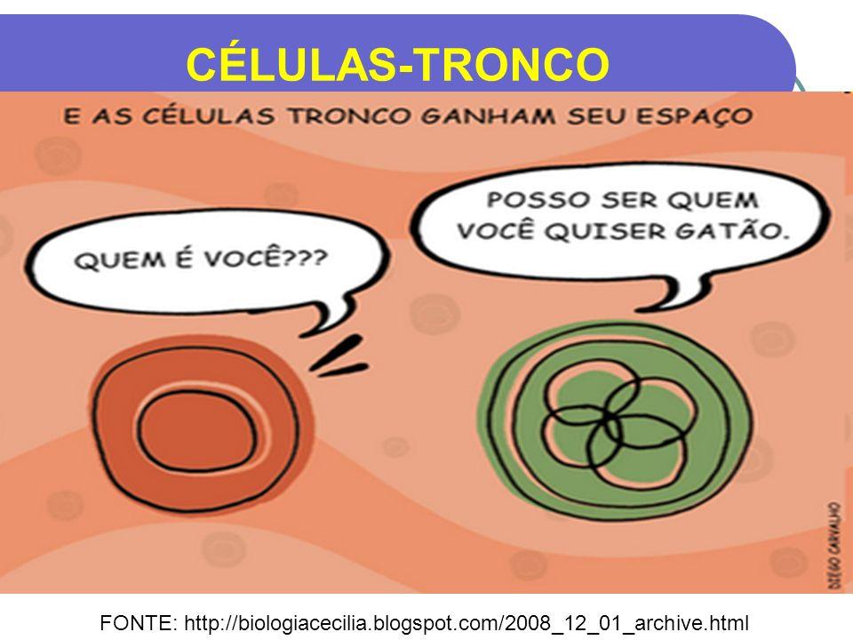CÉLULAS-TRONCO FONTE: http://biologiacecilia.blogspot.com/2008_12_01_archive.html
