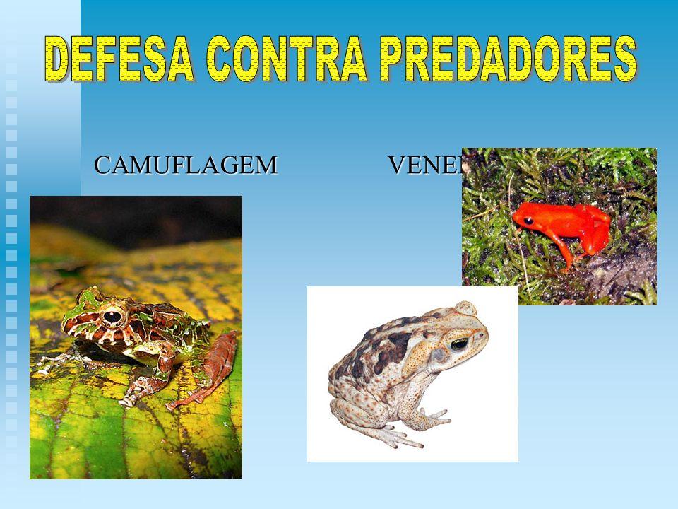 DEFESA CONTRA PREDADORES