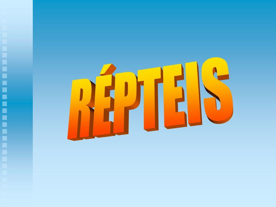 RÉPTEIS