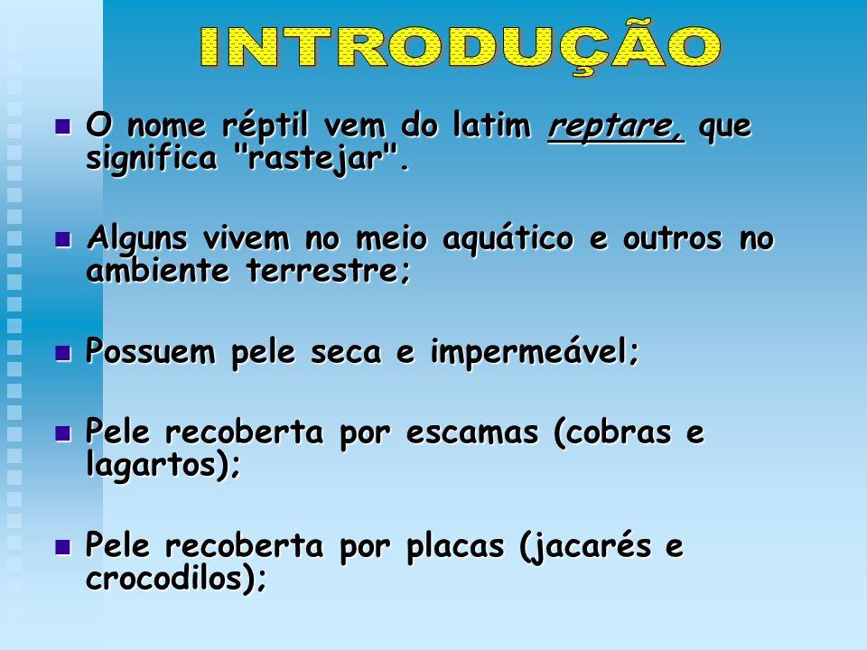 INTRODUÇÃO O nome réptil vem do latim reptare, que significa rastejar . Alguns vivem no meio aquático e outros no ambiente terrestre;