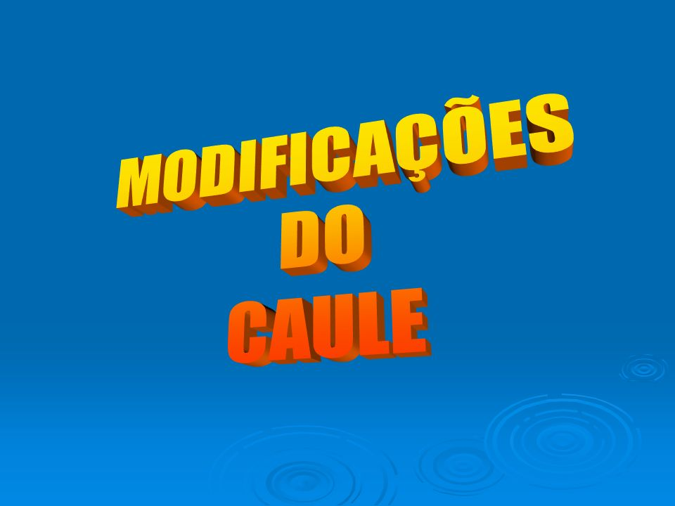 MODIFICAÇÕES DO CAULE