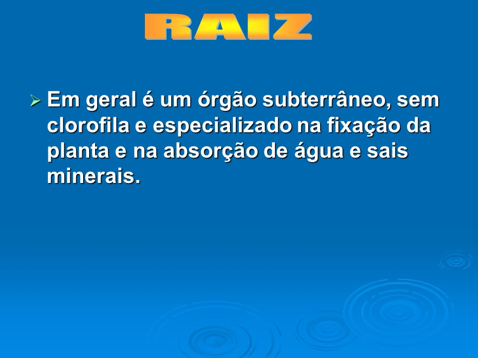 RAIZEm geral é um órgão subterrâneo, sem clorofila e especializado na fixação da planta e na absorção de água e sais minerais.
