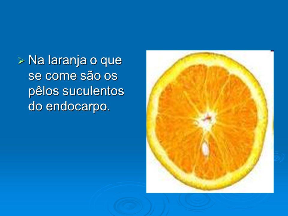 Na laranja o que se come são os pêlos suculentos do endocarpo.