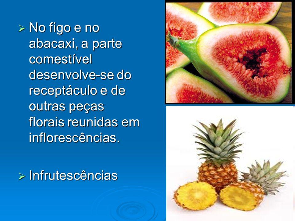 No figo e no abacaxi, a parte comestível desenvolve-se do receptáculo e de outras peças florais reunidas em inflorescências.