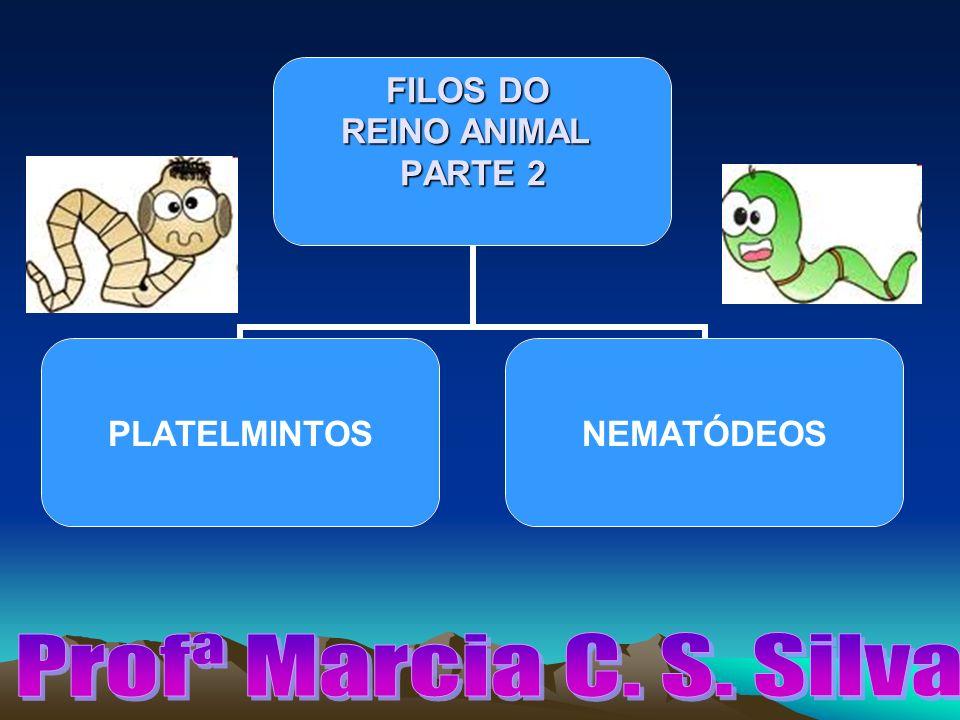 Profª Marcia C. S. Silva