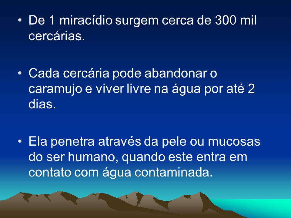 De 1 miracídio surgem cerca de 300 mil cercárias.