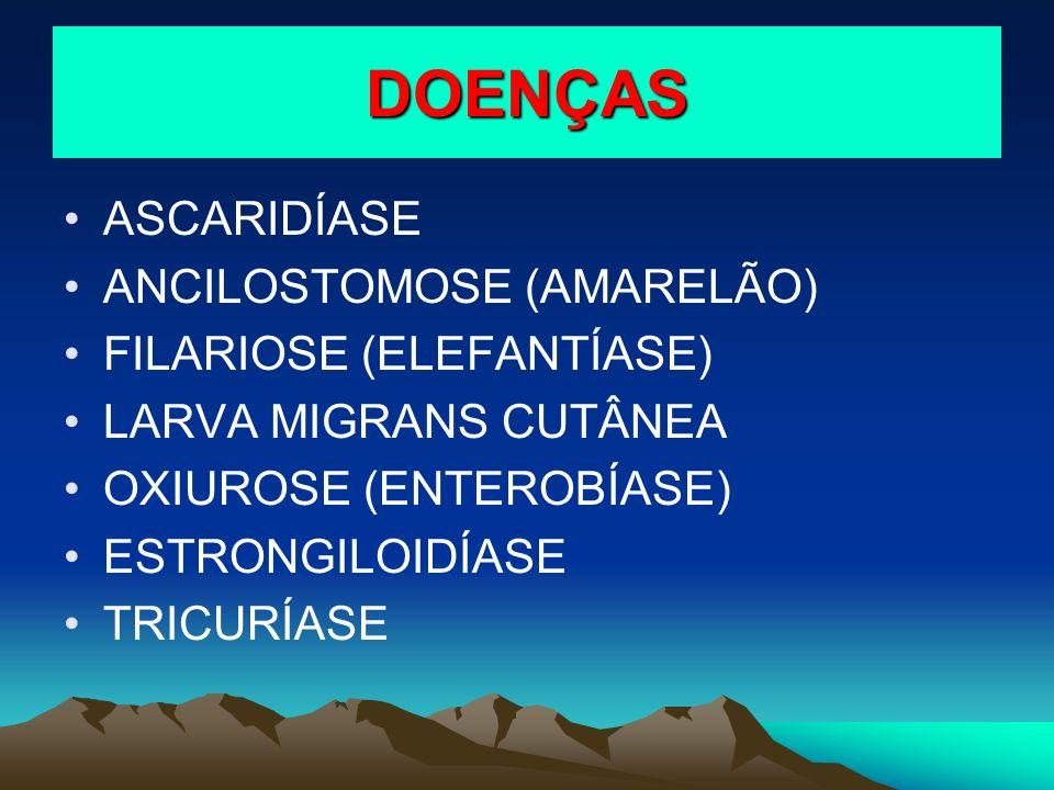 DOENÇAS ASCARIDÍASE ANCILOSTOMOSE (AMARELÃO) FILARIOSE (ELEFANTÍASE)