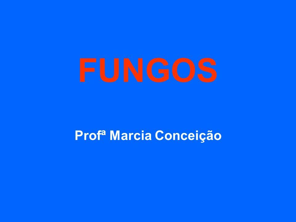Profª Marcia Conceição