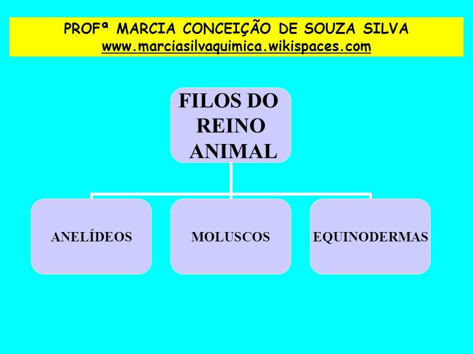 PROFª MARCIA CONCEIÇÃO DE SOUZA SILVA www. marciasilvaquimica