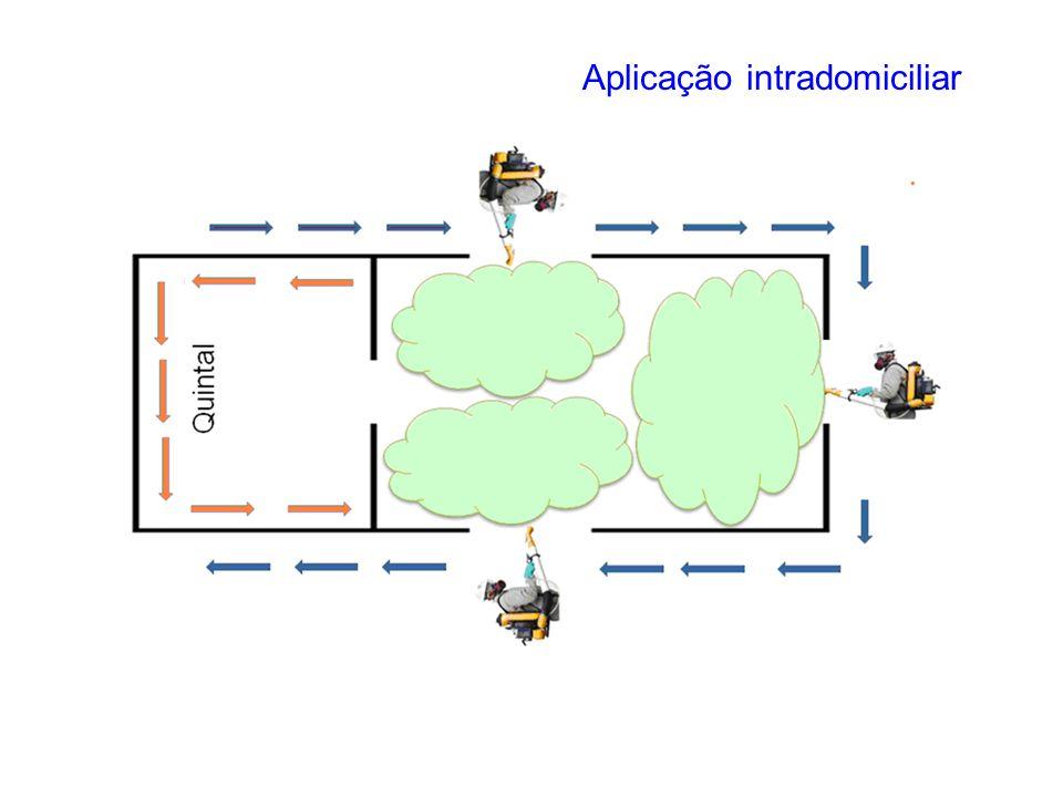 Aplicação intradomiciliar
