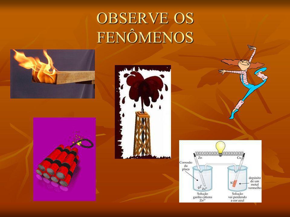 OBSERVE OS FENÔMENOS