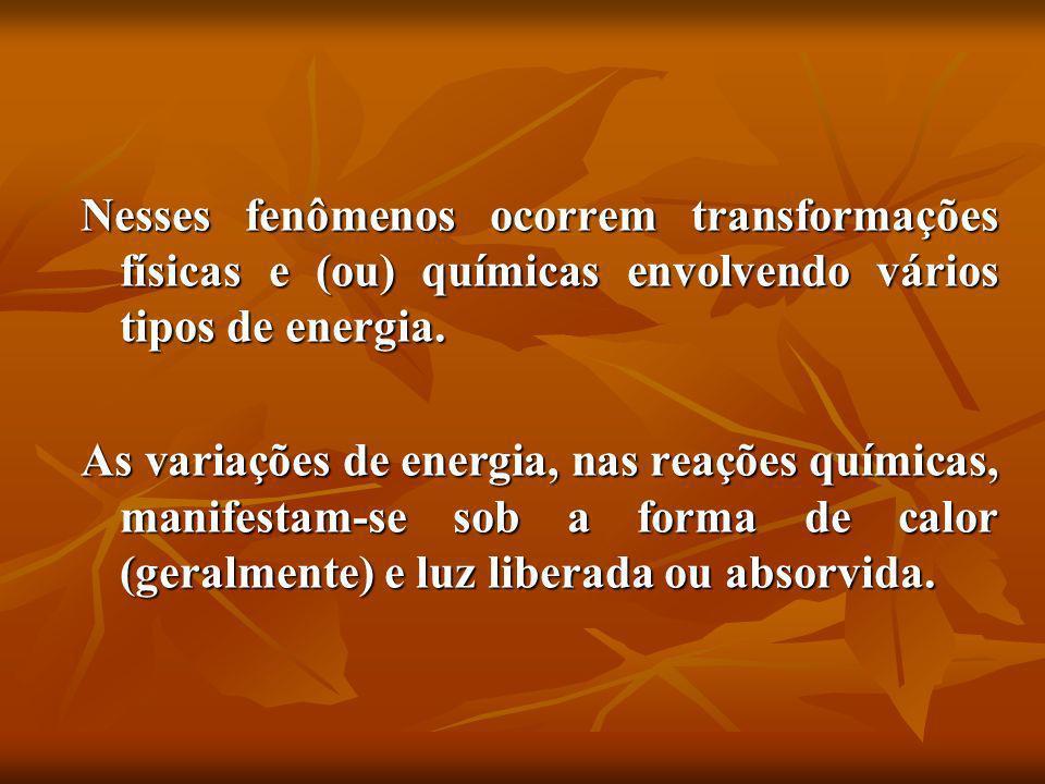 Nesses fenômenos ocorrem transformações físicas e (ou) químicas envolvendo vários tipos de energia.