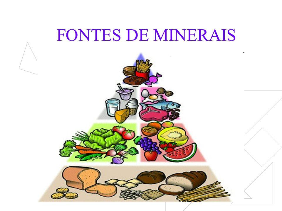 FONTES DE MINERAIS
