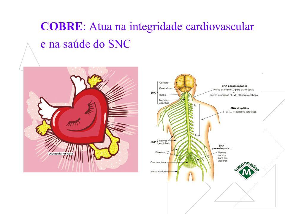 COBRE: Atua na integridade cardiovascular e na saúde do SNC