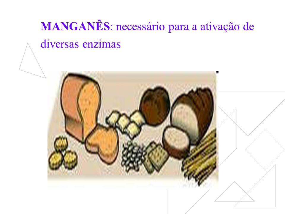 MANGANÊS: necessário para a ativação de diversas enzimas