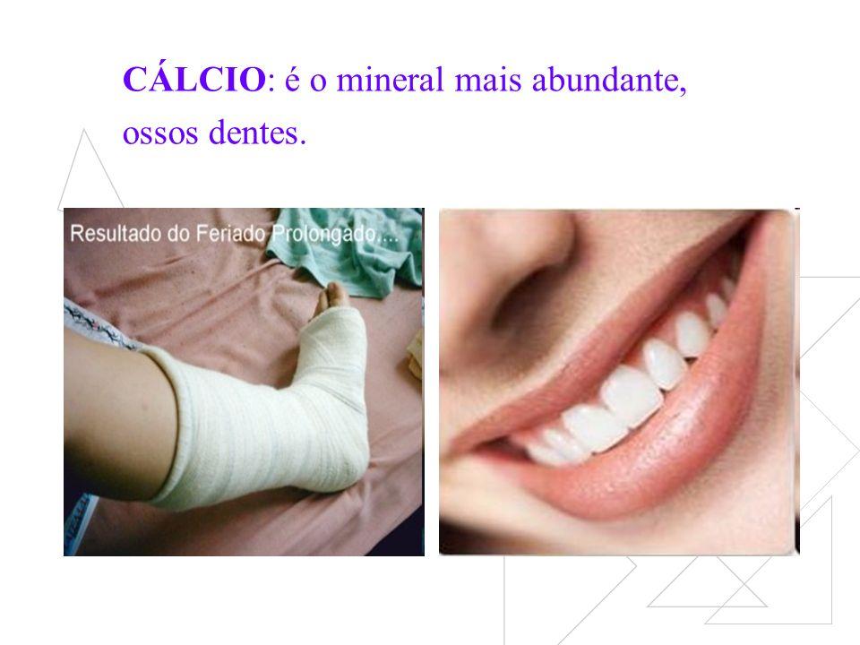 CÁLCIO: é o mineral mais abundante, ossos dentes.