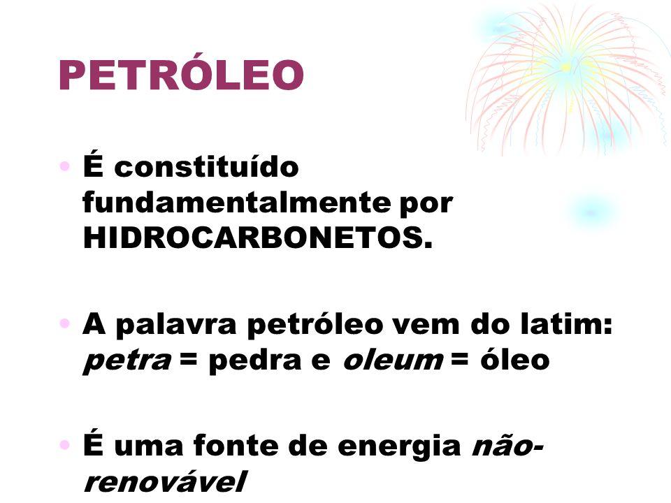 PETRÓLEO É constituído fundamentalmente por HIDROCARBONETOS.