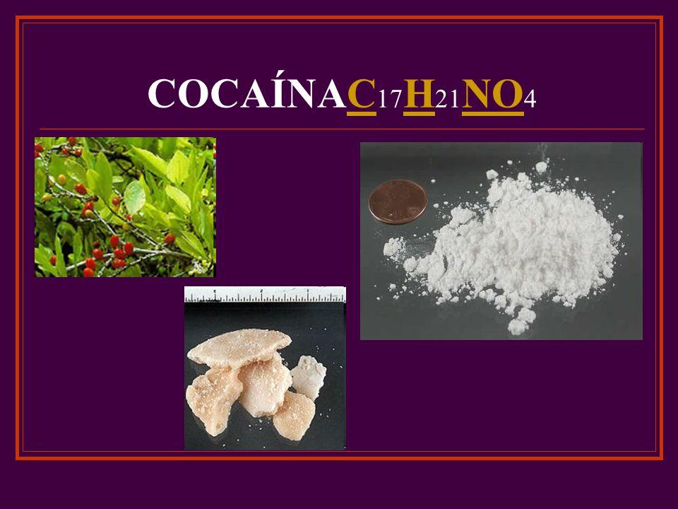 COCAÍNAC17H21NO4