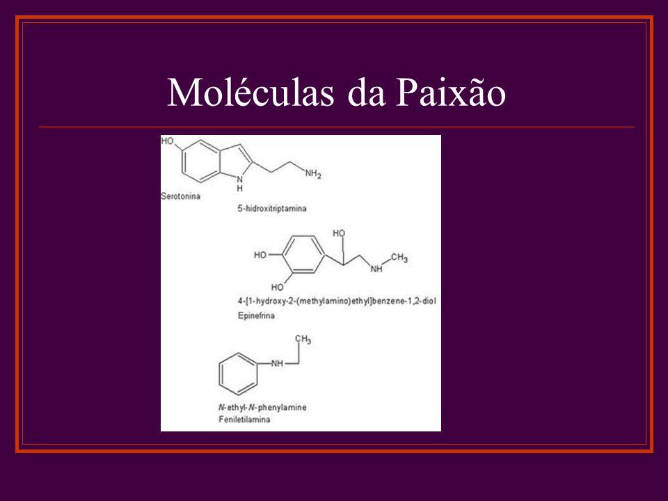 Moléculas da Paixão