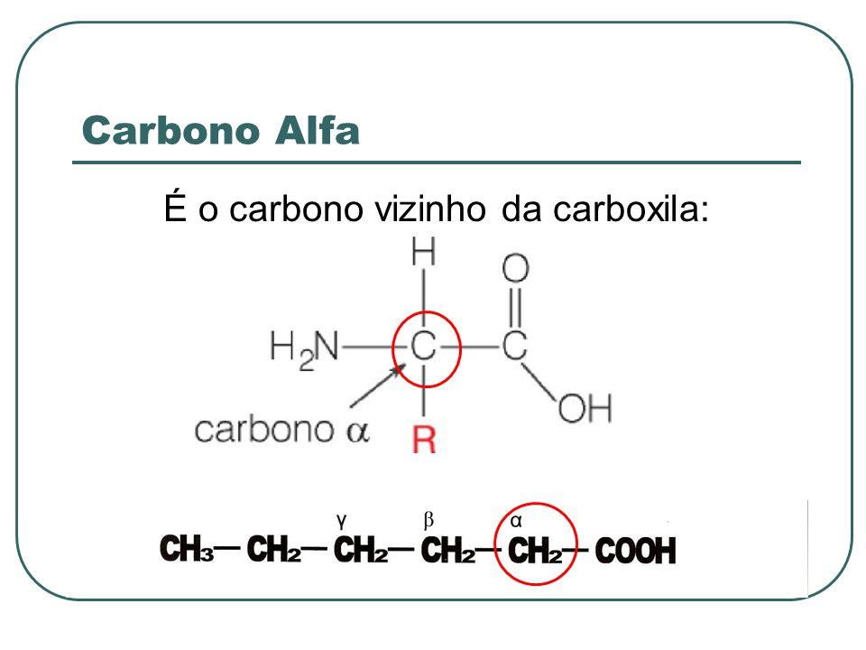 É o carbono vizinho da carboxila:
