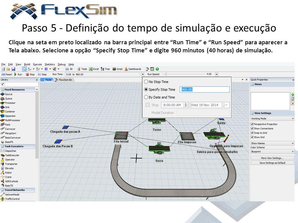 Passo 5 - Definição do tempo de simulação e execução