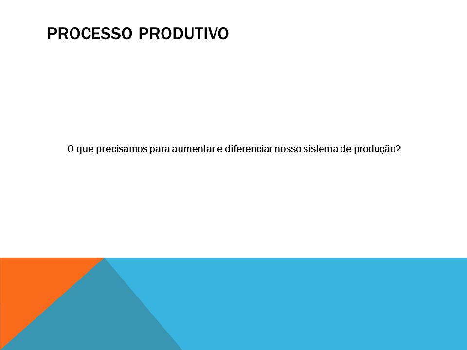 Processo Produtivo O que precisamos para aumentar e diferenciar nosso sistema de produção