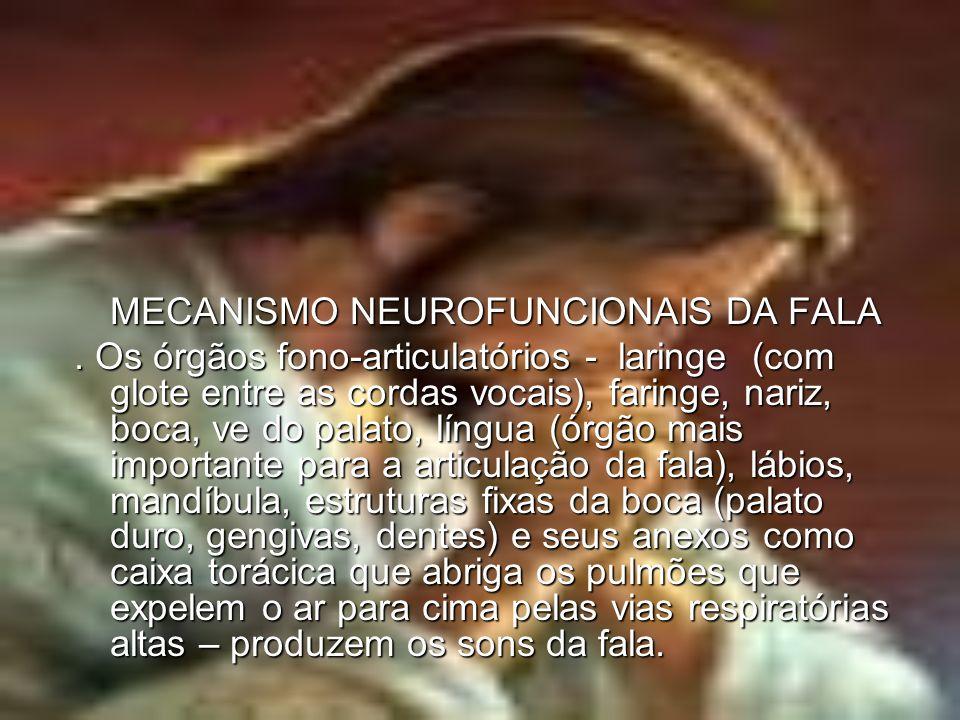 MECANISMO NEUROFUNCIONAIS DA FALA