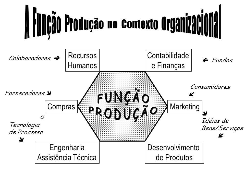 A Função Produção no Contexto Organizacional