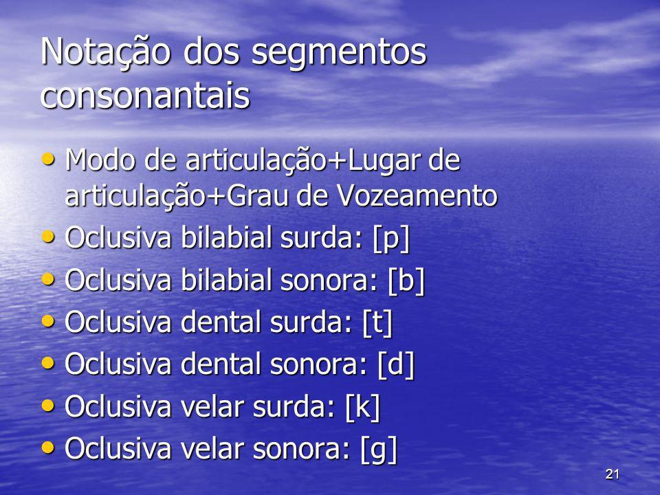 Notação dos segmentos consonantais