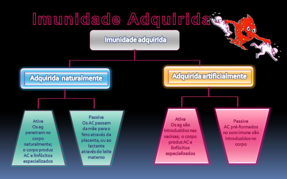 Imunidade Adquirida Imunidade adquirida Adquirida artificialmente