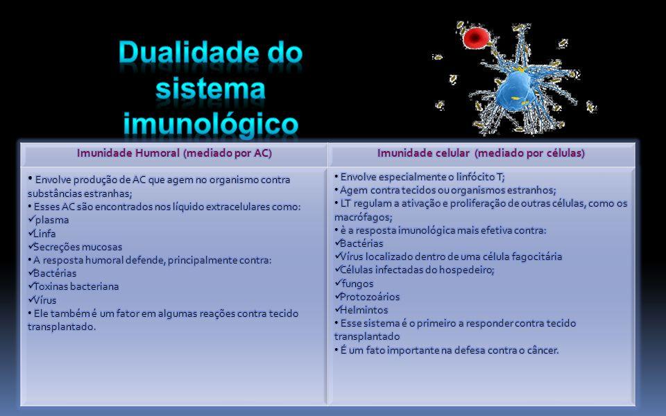 Imunidade Humoral (mediado por AC)