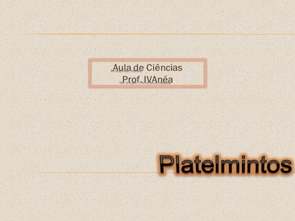 Aula de Ciências Prof. IVAnéa Platelmintos