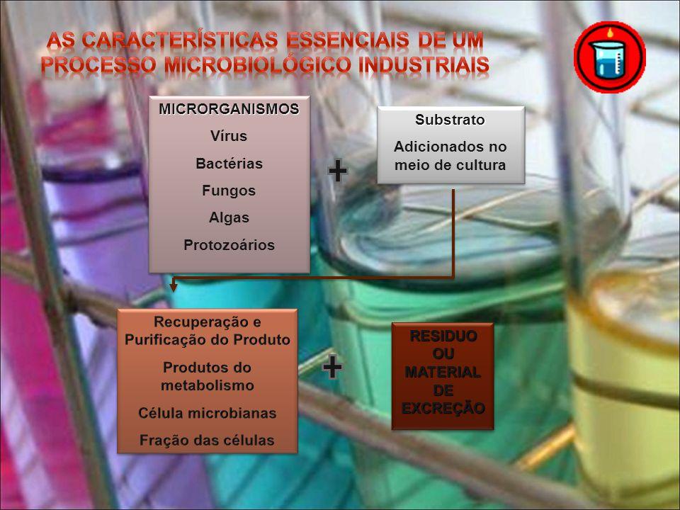 As características essenciais de um processo microbiológico industriais