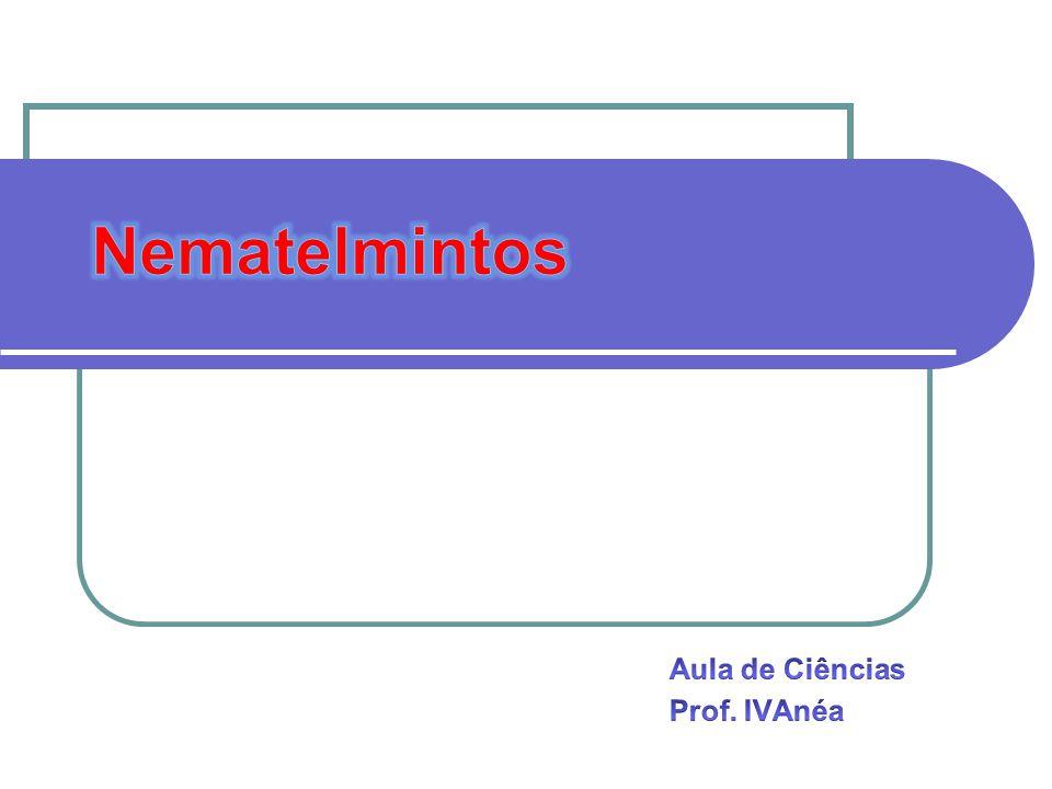 Aula de Ciências Prof. IVAnéa