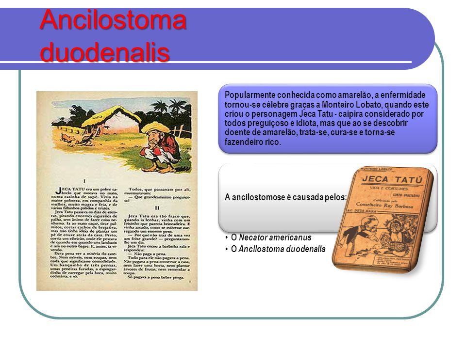 Ancilostoma duodenalis