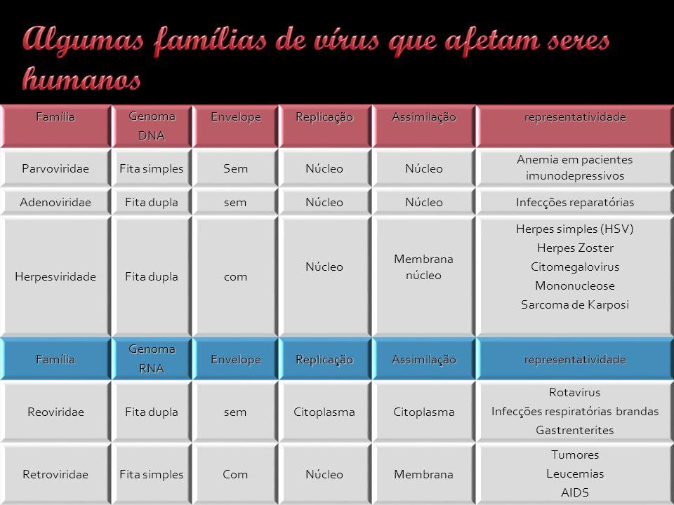 Algumas famílias de vírus que afetam seres humanos
